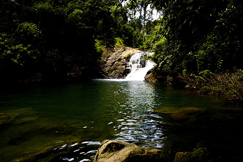 Swimming at Ton Kloi Waterfall, Khao Sok National Park