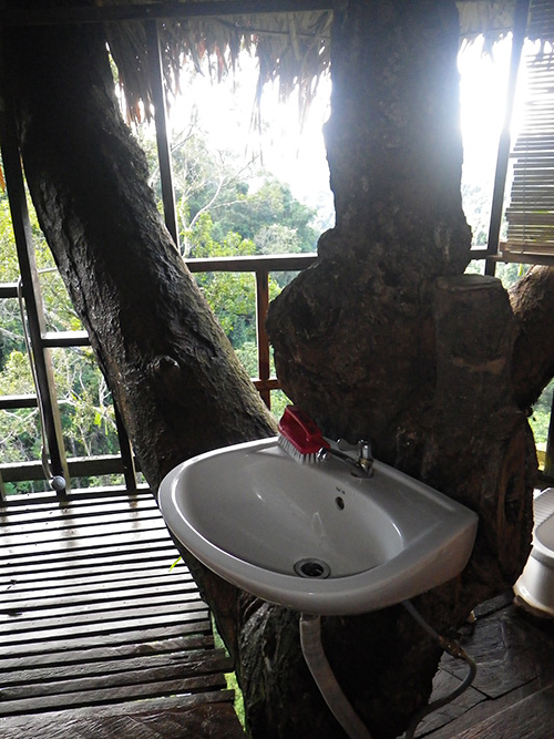 Treehouse 5 bathroom with a view!