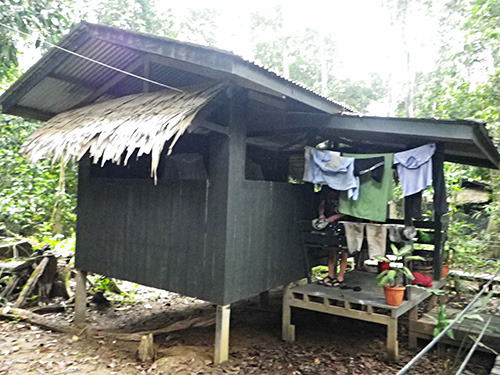 Our Jungle hut at Uncle Tans Widlife Safari